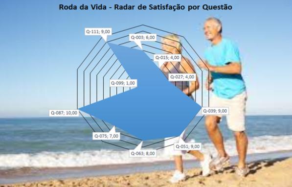 Roda da Vida - Radar de Satisfação por Questão